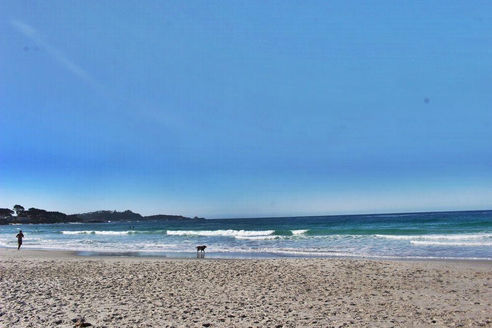 「カーメル バレー ランチ」からなら美しいビーチもすぐ近く!