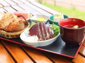 高知「黒潮工房」で絶品料理とカツオのわら焼き体験を楽しもう!