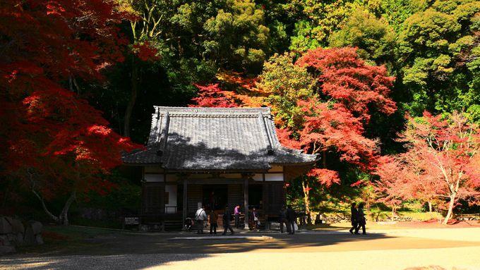 紅葉シーズンは毎日本堂で秘仏御開帳