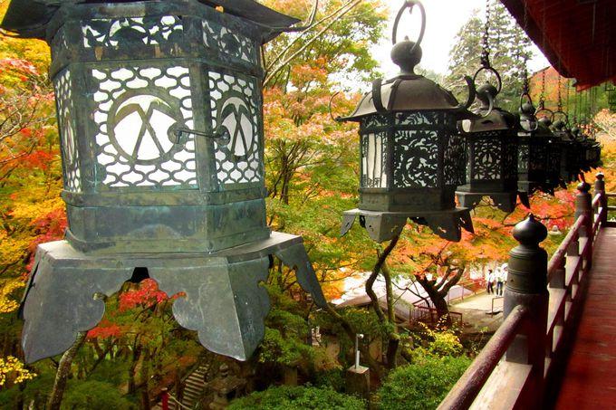 吊燈籠とモミジ