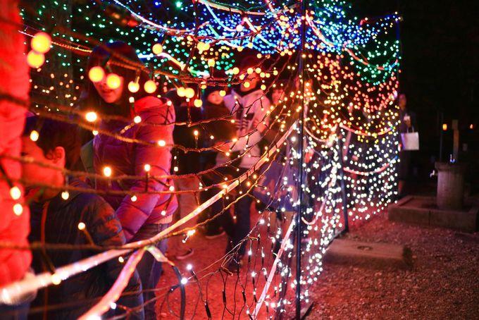 光のトンネルを通って三ノ丸エリアへ!