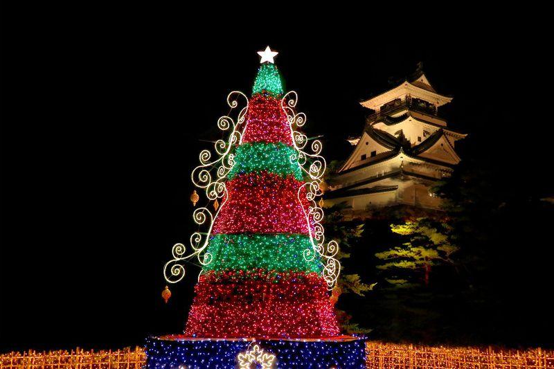 高知城とイルミネーションツリーのコラボ写真が撮れる!「冬のきらめき」