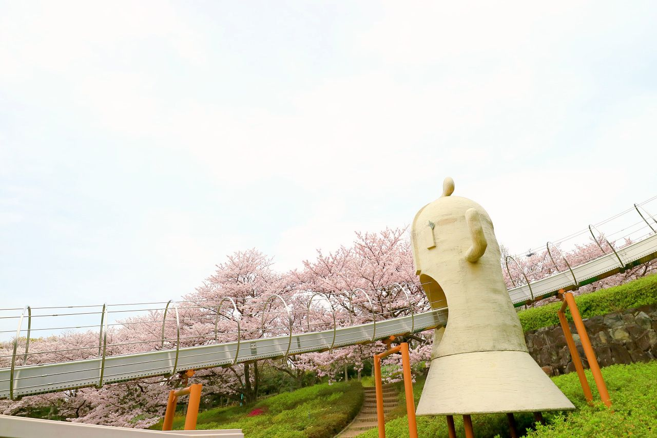 子連れファミリーに人気!峰山公園の桜
