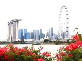 初めてのシンガポールを観光するならココ!5日間おすすめモデルコース