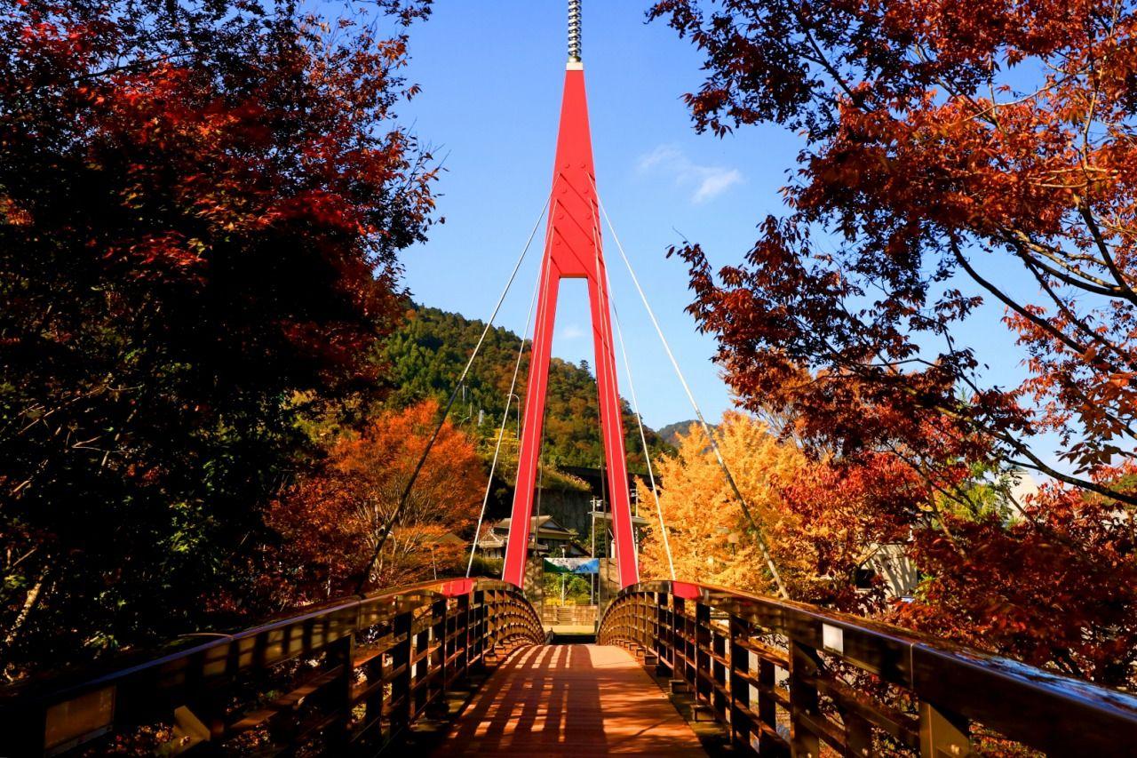 紅葉も楽しめる「道の駅 霧の森」