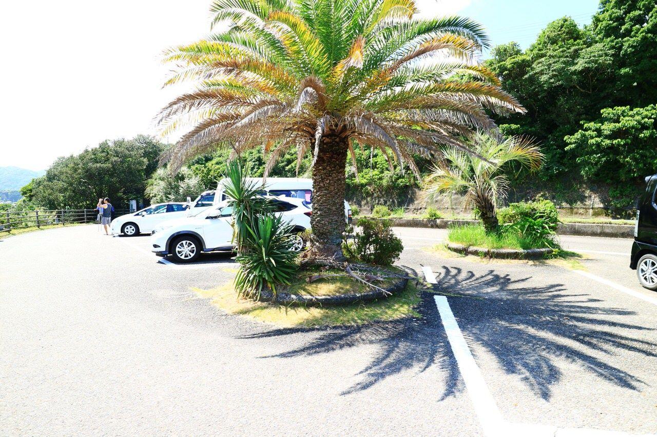 「大岐ビーチ展望駐車場」からの景色は必見!