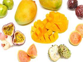 超絶甘いマンゴーやアテモヤも!沖縄で南国フルーツを買おう!