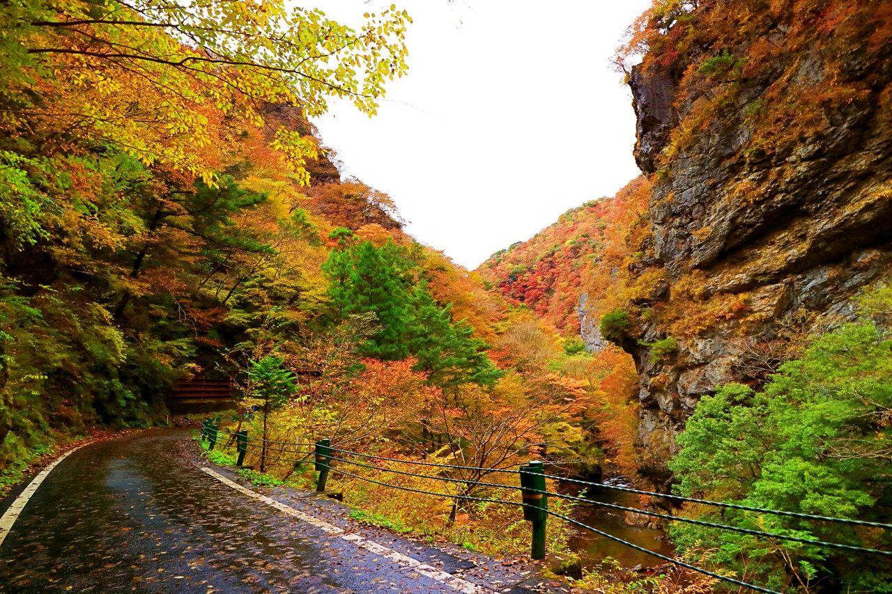 山一面カラフルに色付くべふ峡