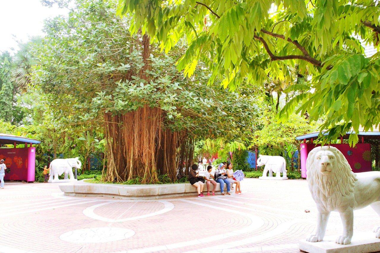 シンガポールを代表する巨大国立公園