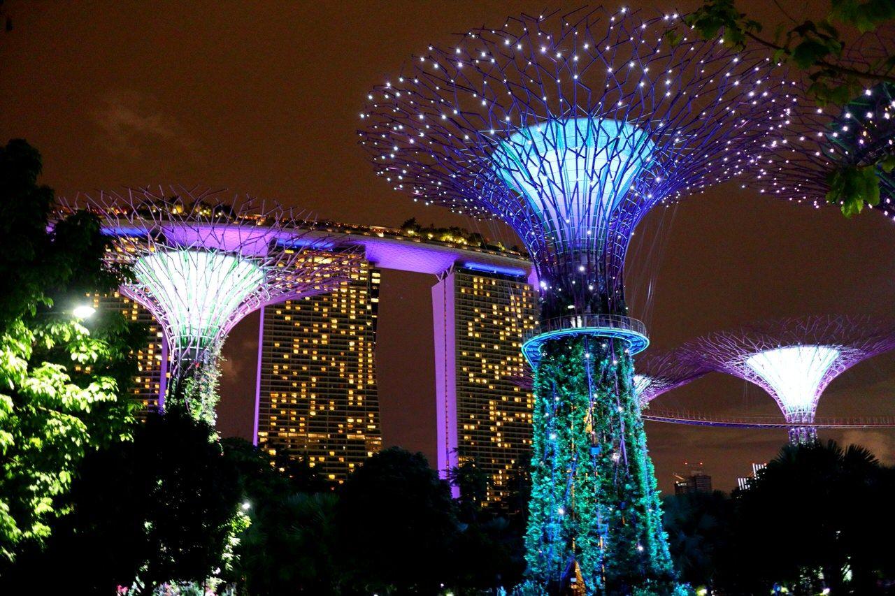 2日目夜:シンガポール名物のナイトショーを2つはしご
