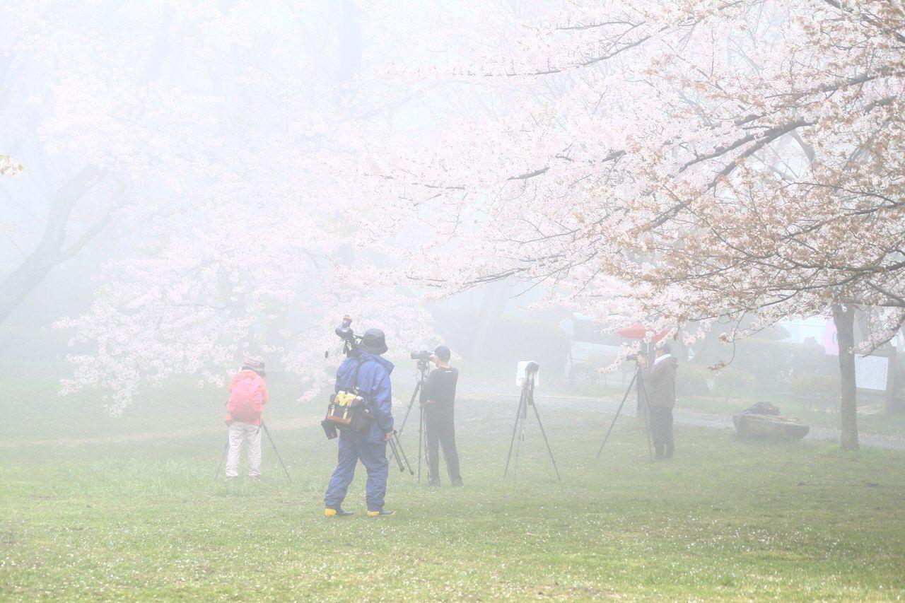 カメラマンがこぞって集まるスポット