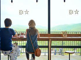 山口県秋吉台のカフェ「カルスター」は日本最大カルストが望める!