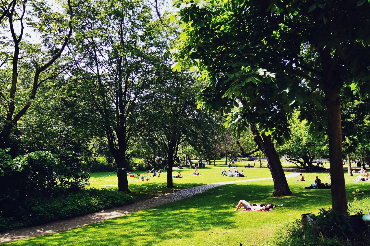 閑静な公園でまったり休憩
