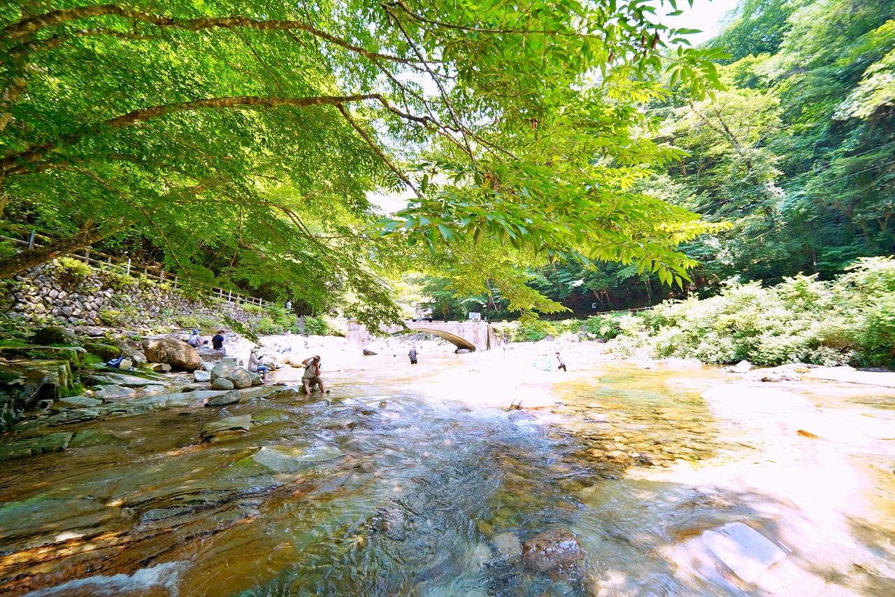 水質良好!浅瀬で川遊びが楽しめる「面河渓」