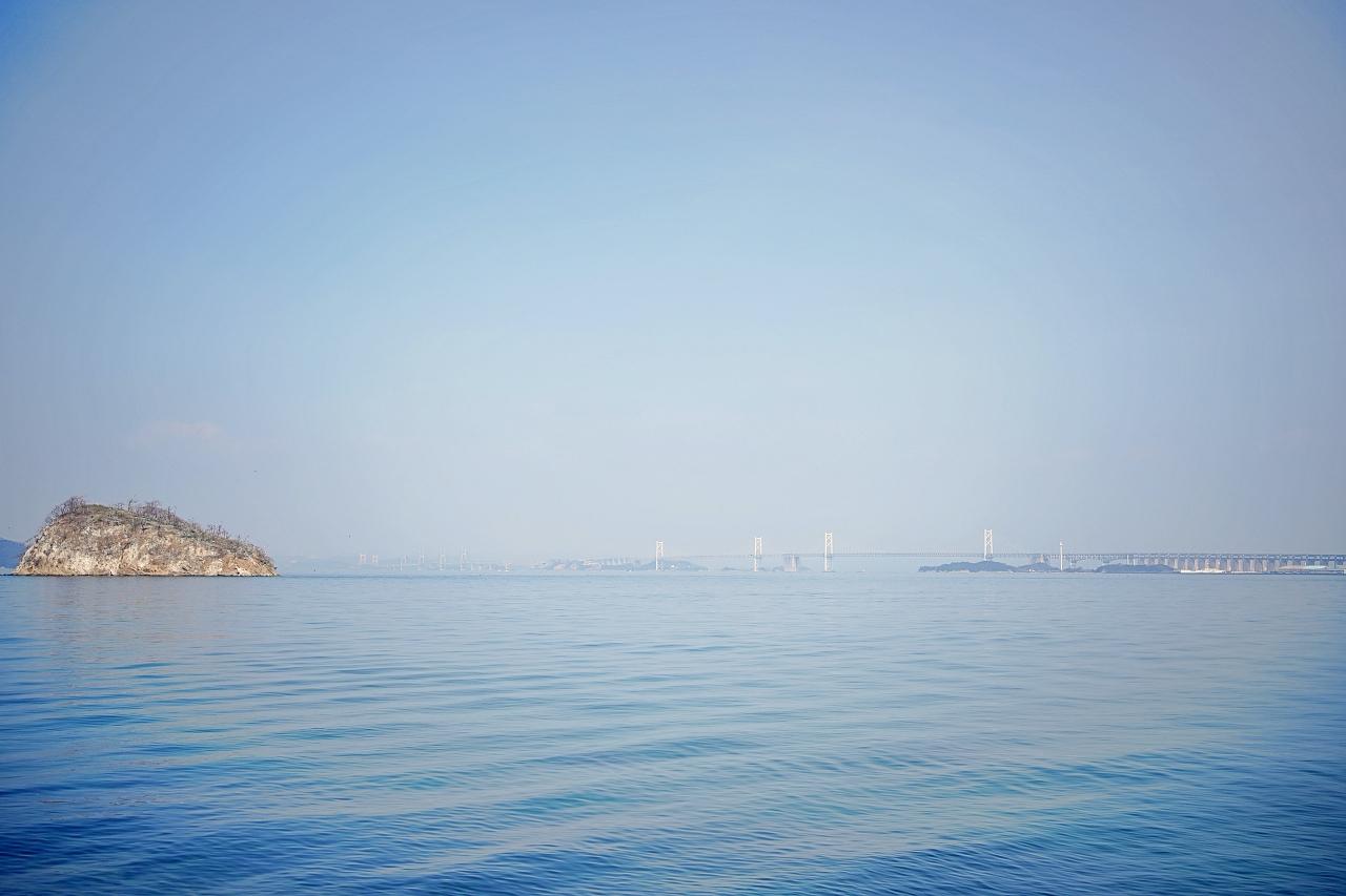 松原越しに見る穴場!?富士見町緑地