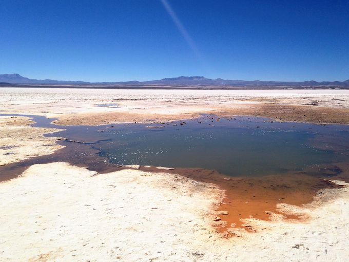 水脈から吹き出す塩水!乾季にしか見られない「塩の目」
