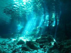 光のカーテンの中で泳ぎたい!メキシコ カンクンから行くセノーテ「ドスオホス」