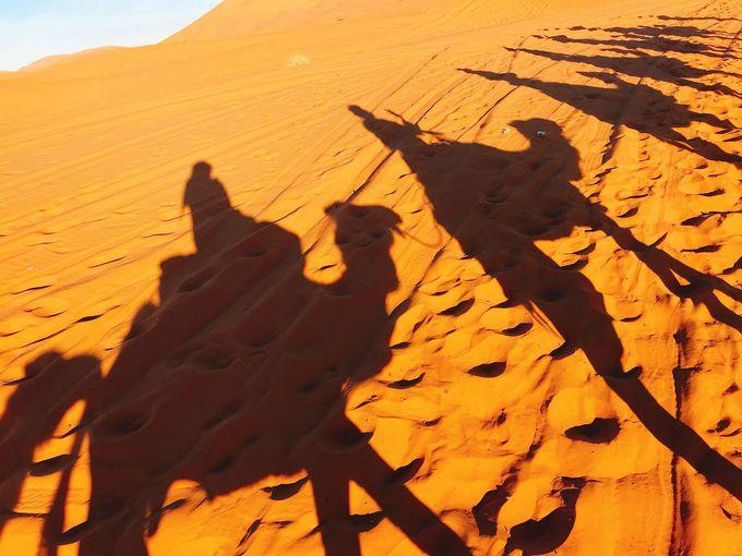 砂漠に到着!ラクダに乗ってテントへ向かおう