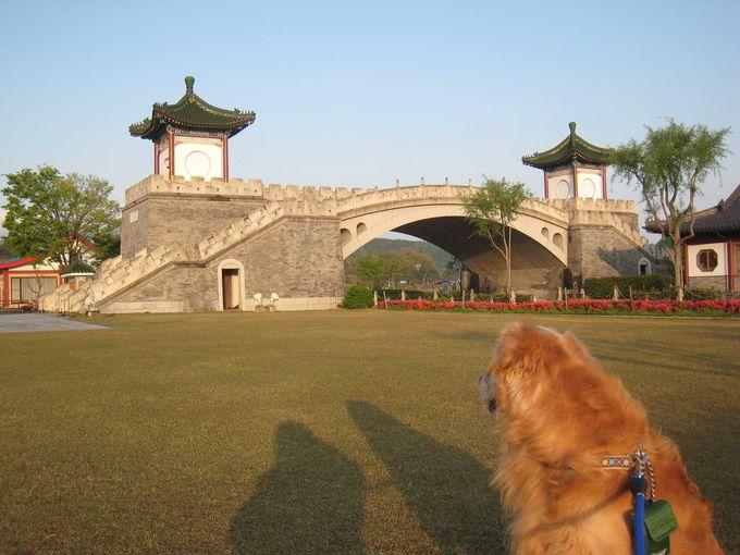 犬連れも楽しめる園外の散策