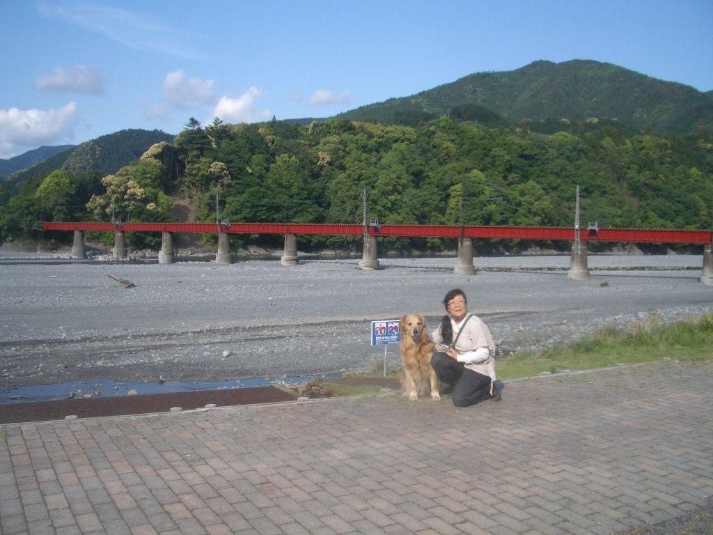 大井川沿いで待つSL通過