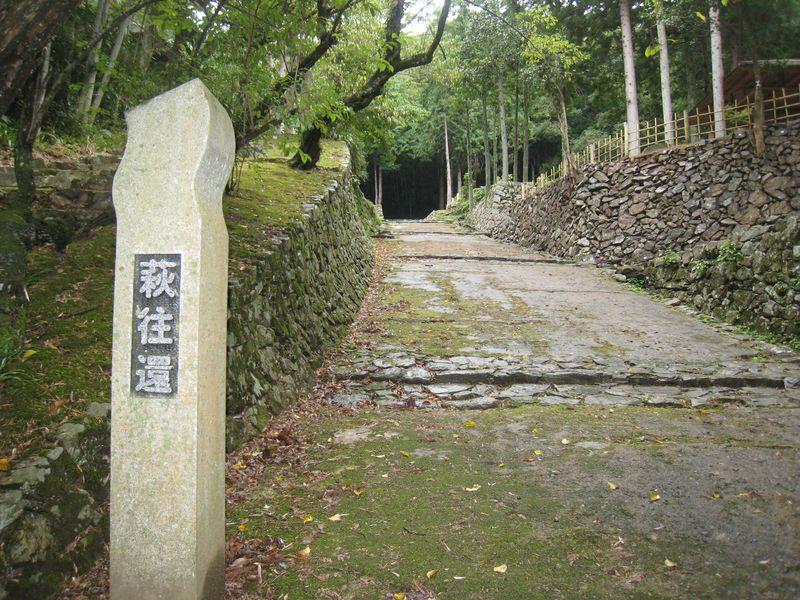 一度は歩いてみたい歴史の道・「萩往還」!お勧めの「石畳スポット」
