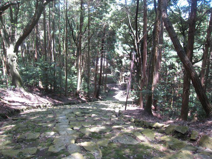 苔むした石段が美しい