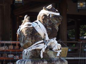 滋賀の古社「兵主大社」で狛犬に魔払いを祈願!