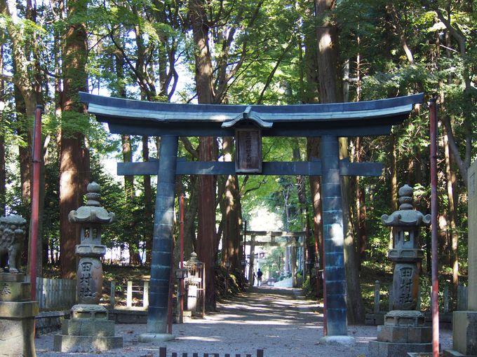 8.田村神社/甲賀市