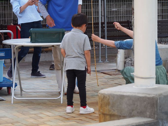小さい子どもも安全な「磯遊び」