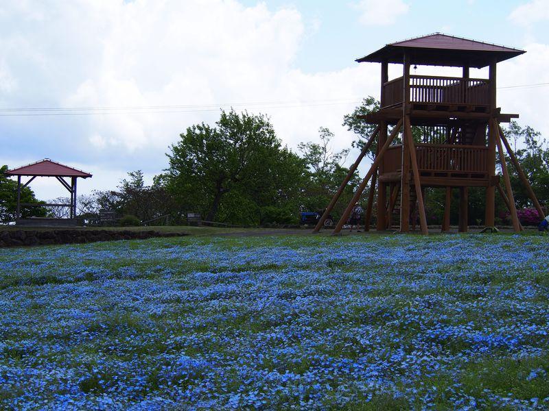 三重「メナード青山リゾート」で爽やかな初夏の風とハーブの香りを