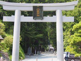 静岡県森町「小国神社」で願い事を!良縁・金運の御利益が凄い