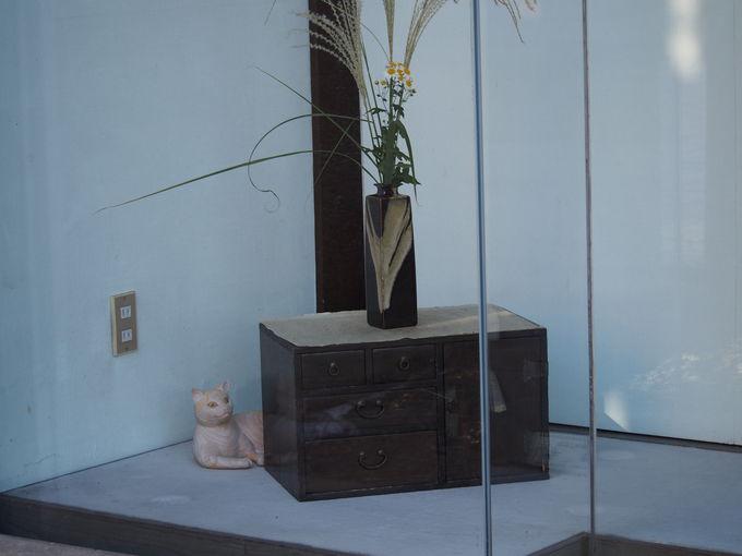 夢中になる事まちがいなしの「木彫り猫探し」