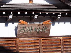 富山県井波「瑞泉寺八日町通り」で職人技の木彫り猫を探そう