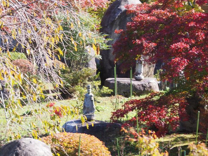 季節の移ろいも楽しめる庭園
