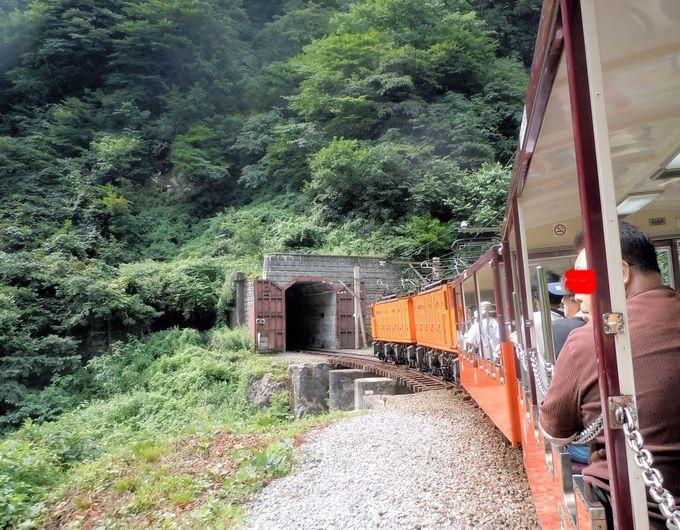 日本一の深いV字型峡谷と狭いトンネルは、息をのむ迫力!