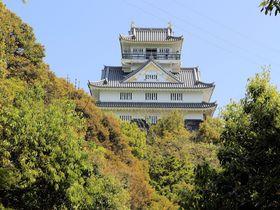 信長が天下取りを決意した絶景を!マムシの棲む岐阜県「稲葉山城」
