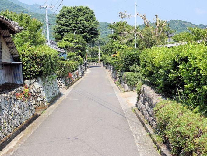 女優「美咲ちゃん」の応援に、TOKIOのメンバーやセレブないずみお嬢様までもが集まった里町の武家屋敷