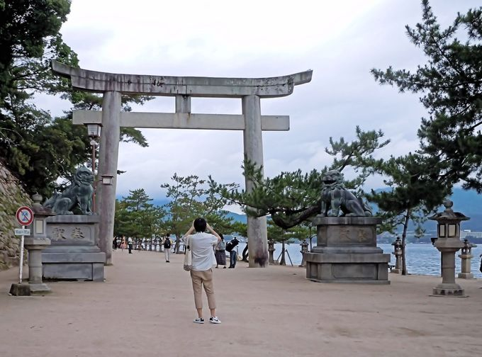 牡蠣養殖で有名な、真っ青な大野瀬戸を渡った向こうの海上に映える、厳島神社の朱色の大鳥居