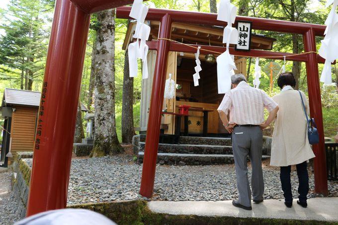 富士の霊峰を背にして森の中にひっそりと佇む「新屋山神社奥宮」!