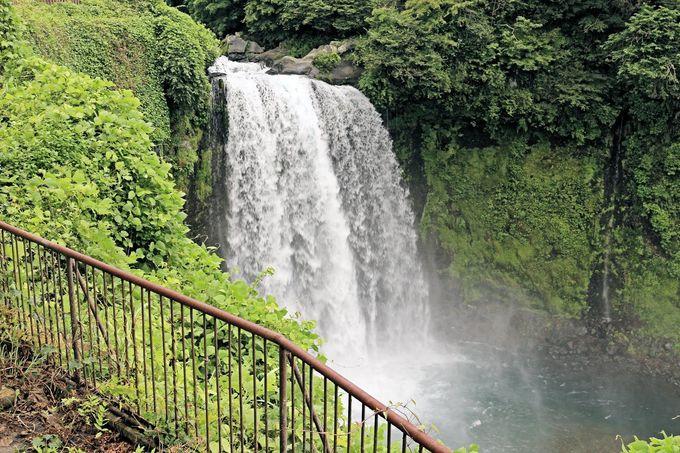 涼風とミストに包まれた別天地の中に見る優しい滝の姿