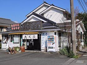 絶品!アジのまご茶漬けに心躍る!西伊豆松崎の食堂「さくら」