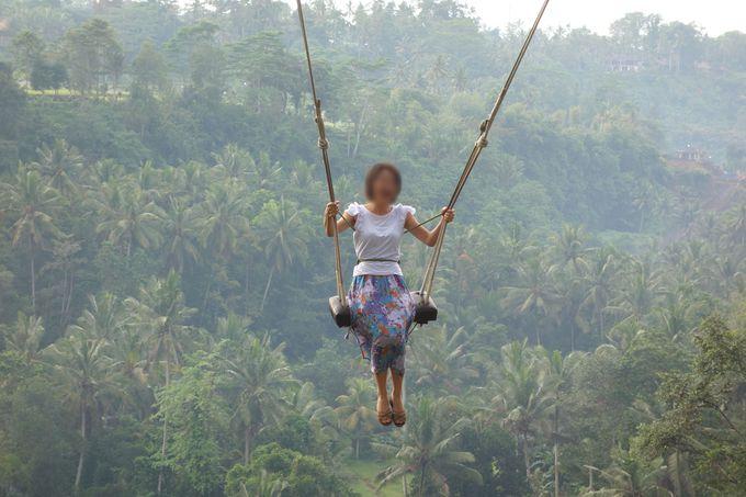 リアルハイジになってジャングルへ飛び出せ!