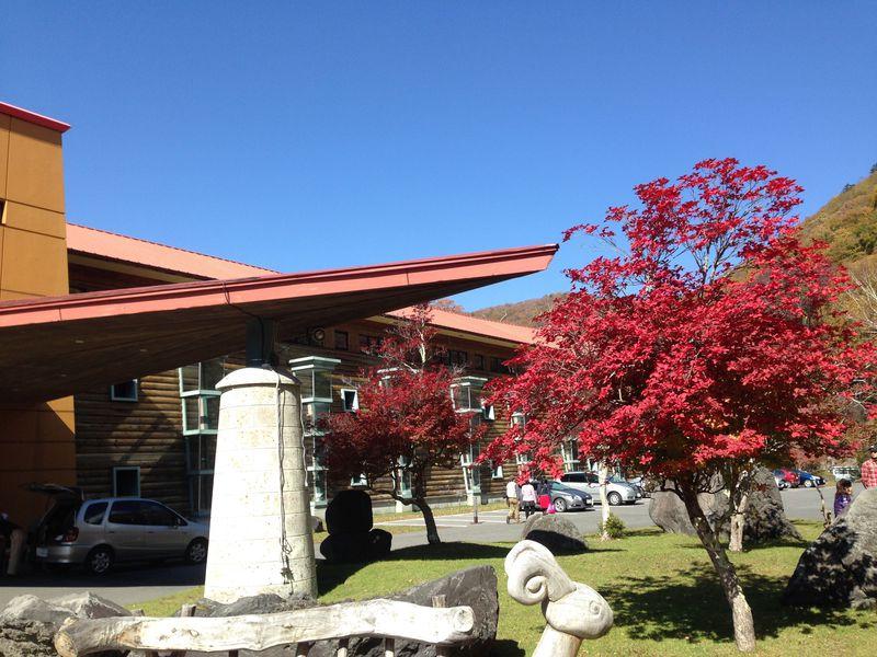 中禅寺湖のホテルおすすめ7選 湖畔で春夏秋冬の絶景を堪能しよう