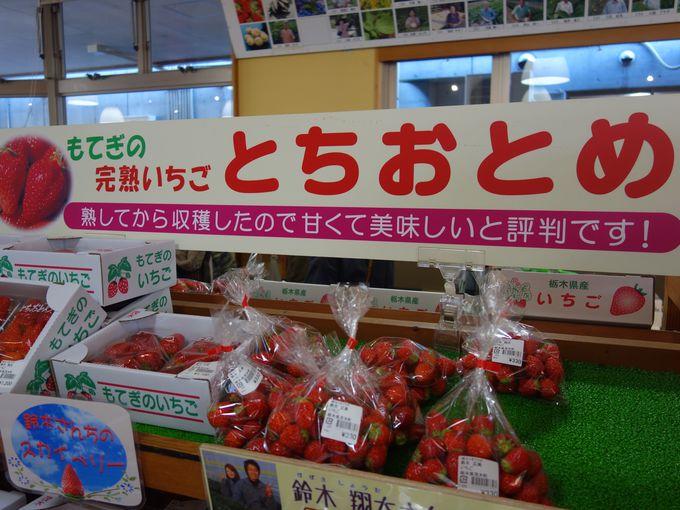 お土産には採れたて新鮮イチゴもおすすめ!