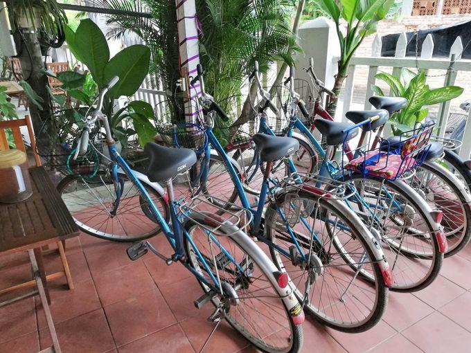 自転車でホイアン散策がおすすめ