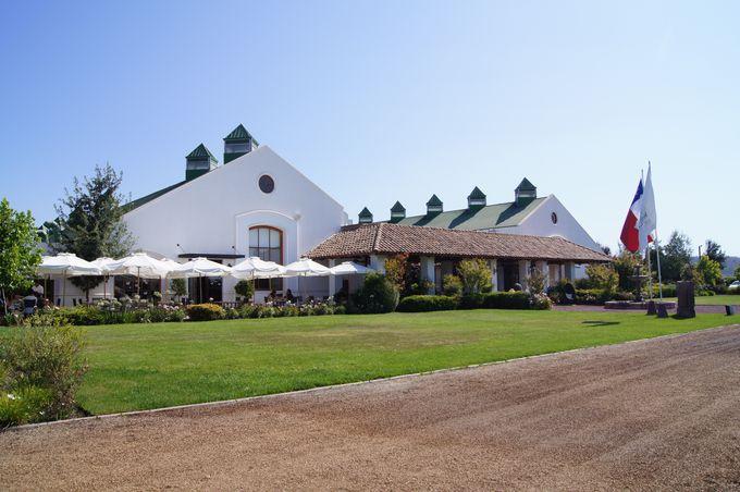 ワインと食のマリアージュならここ!「カサス・デル・ボスケ (Casas del Bosque)」