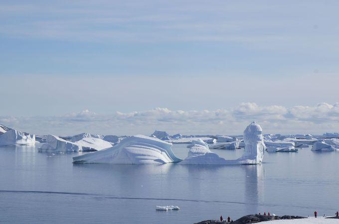 ありすぎるのに見ていて飽きない表情豊かな氷山