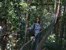 ジャングルならではのアクティビティーに浸る マレーシア「タマンネガラ国立公園」