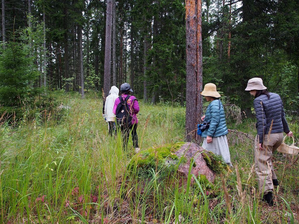 まるで『かもめ食堂』の世界 フィンランドの森できのこ狩り
