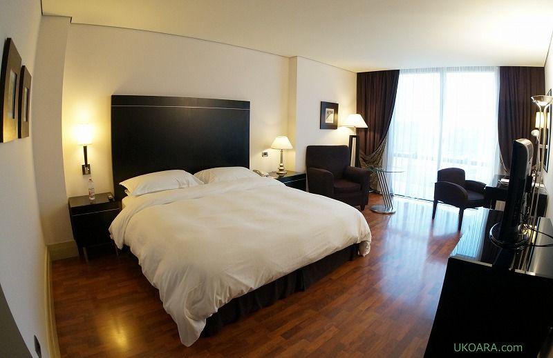 マクアルバニアの客室